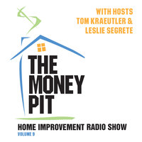 The Money Pit, Vol. 9 - Tom Kraeutler,Leslie Segrete