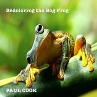 Bedolorrog the Bog Frog - Paul Cook
