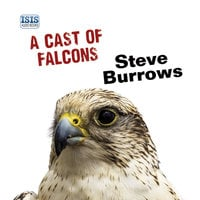 A Cast of Falcons - Steve Burrows