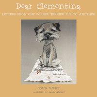Dear Clementina - Colin Burke