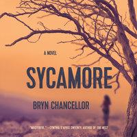 Sycamore - Bryn Chancellor