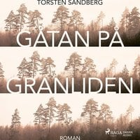 Gåtan på Granliden - Torsten Sandberg