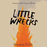 Little Wrecks - Meredith Miller