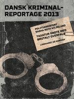 Taxatur endte med brutalt overfald - Dansk Kriminalreportage - Diverse forfattere, Sasha Roth Kildelund