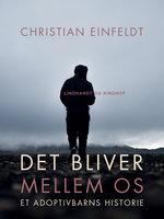 Det bliver mellem os - et adoptivbarns historie - Christian Einfeldt