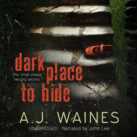 Dark Place to Hide - A.J. Waines