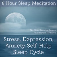 8 Hour Sleep Meditation - Stress, Depression, Anxiety Help Sleep Cycle (The Sleep Learning System with Rachael Meddows) - Joel Thielke