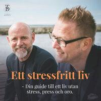 Ett stressfritt liv - Din guide till ett liv utan stress, press och oro. - Tomas Lydahl, Dennis Westerberg