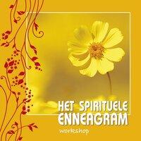 Het spirituele Enneagram - Willem Jan van de Wetering