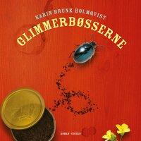 Glimmerbøsserne - Karin Brunk Holmqvist