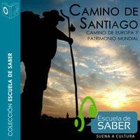 Camino de Santiago - Francisco Singul