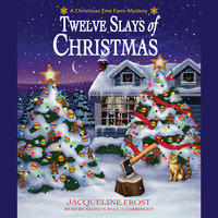 Twelve Slays of Christmas - Julie Anne Lindsey