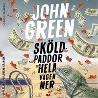 Sköldpaddor hela vägen ner - John Green
