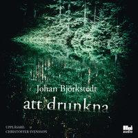 Att drunkna - Johan Björkstedt