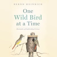 One Wild Bird at a Time - Portraits of Individual Lives - Bernd Heinrich