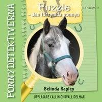 Puzzle – den förrymda ponnyn - Belinda Rapley