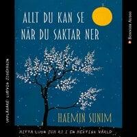 Allt du kan se när du saktar ner : Hitta lugn och ro i en hektisk värld - Haemin Sunim
