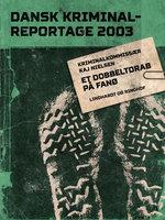 Et dobbeltdrab på Fanø - Diverse, Diverse forfattere
