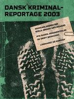 PFA-sagen, dokumentfalsk og groft bedrageri - Diverse, Diverse forfattere