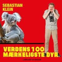 Verdens 100 mærkeligste dyr, Koalabjørnen - Sebastian Klein