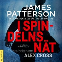 I spindelns nät - James Patterson