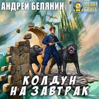 Колдун на завтрак - Андрей Белянин
