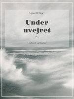 Under uvejret - Sigurd Elkjær