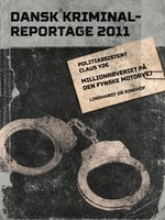 Millionrøveriet på den fynske motorvej - Diverse, Diverse forfattere