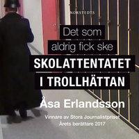 Det som aldrig fick ske - Åsa Erlandsson