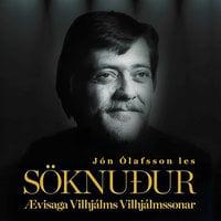 Söknuður – Ævisaga Vilhjálms Vilhjálmssonar - Jón Ólafsson
