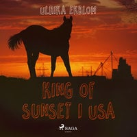 King of Sunset i USA - Ulrika Ekblom