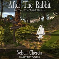 After The Rabbit - Nelson Chereta