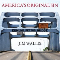 America's Original Sin: Racism, White Privilege, and the Bridge to a New America - Jim Wallis