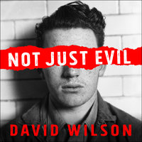 Not Just Evil: Murder, Hollywood, and California's First Insanity Plea - David Wilson