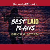 Best Laid Plans - Storm, Brick