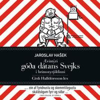 Góði dátinn Svejk - Jaroslav Hasek