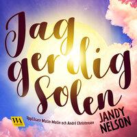 Jag ger dig solen - Jandy Nelson