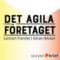 Det agila företaget - fiskstim eller supertankers i en dynamisk värld - Göran Nilsson,Lennart Francke