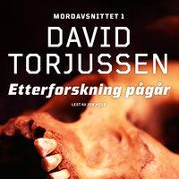 Etterforskning pågår - David Torjussen