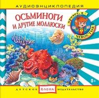 Осьминоги и другие моллюски - Елена Качур,Анна Русс