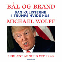Bål og brand - Michael Wolff