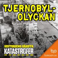 Tjernobylolyckan - Bokasin