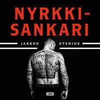 Nyrkkisankari - Jarkko Stenius