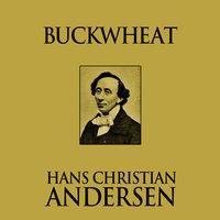 Buckwheat - Hans Christian Andersen