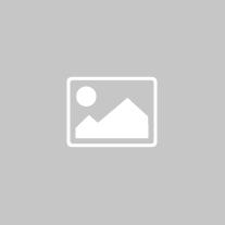 Er speelde nog nét geen draaiorgel - Sylvia Witteman