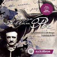Cuentos de Allan Poe - II - Edgar Allan Poe