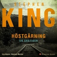 """Höstgärning : Stand by me - en av berättelserna ur novellsamlingen """"Årstider"""" - Stephen King"""