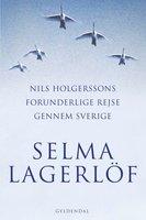 Nils Holgerssons forunderlige rejse gennem Sverige - Selma Lagerlöf