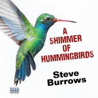A Shimmer of Hummingbirds - Steve Burrows
