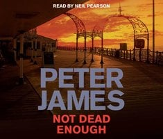 Not Dead Enough - Peter James